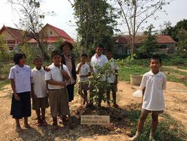 ヤン、ミャンマーカリン、メンガ等の苗木を85本植えました