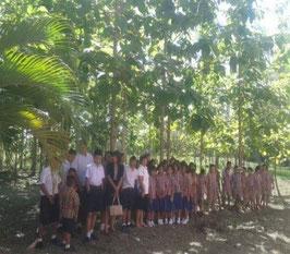 学校の森もこんなに大きく育ちました!