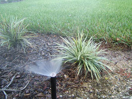 lawn irrigation in central florida