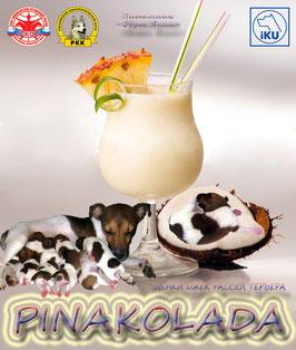 Пинаколада (Pinakolada)