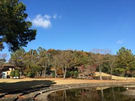 鳩山の公園です
