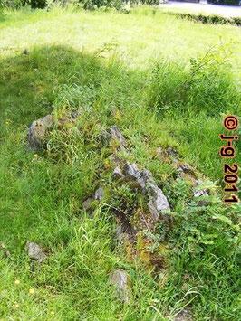 Naturdenkmal:  Biotitschiefer ist durchdrungen mit hellem rötlichem Granit