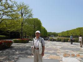 昭和記念公園・・チューリップが満開