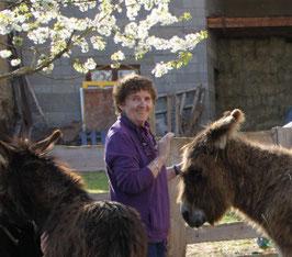 association adada : assistance aux ânes en souffrance