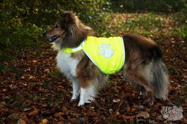 ec chiens recommande de promener son chien avec un gilet fluo pour chien pendant la chasse pour être vu des chasseurs, ce qui n'empêche pas de rester prudent en periode de chasse