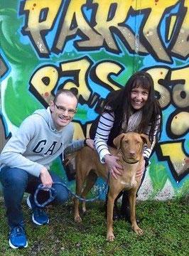 adoption chie de refuge - SPA du Penthièvre - Côtes d'Armor - Bretagne - Liberté pour chiens
