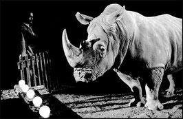 Corso di sviluppo e stampa bianco e nero in camera oscura - Circo © 1997 Andrea Pagliarulo