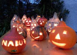 Herbstlichter der NABUKI