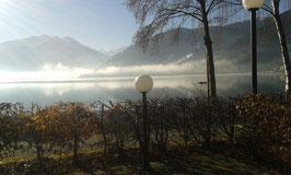Blick über den See nach Zell aus der Gartenwirtschaft des Campingplatzes