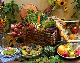 Dieta delle fibre