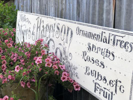 STORRS & HARRISON - IRON ORCHID DESIGNS TRANSFER