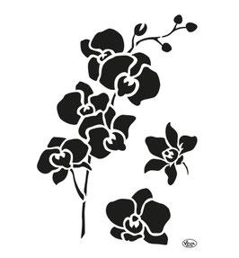 Stencil Orchidee, A4