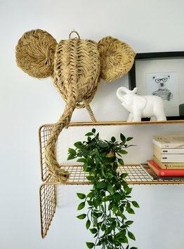 Cabeza elefante esparto | grande