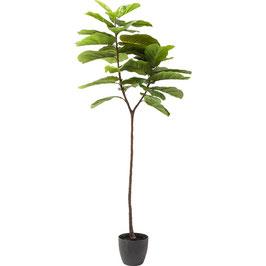 Dekopflanze Leaf Tree