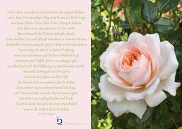 Pfarrkarte - Die Rose