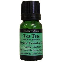 Olio essenziale Tea Tree puro al 100% 10 ml