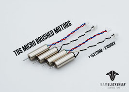 TBS MICRO BRUSHED MOTORS (0617 / 21000KV)