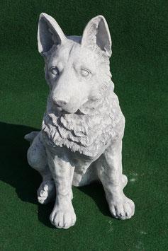 Schäferhund - Art. 854