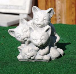 Katzenbande - Art. 263