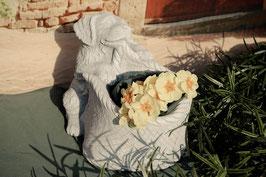 Hund mit Blumentopf - Art. 156