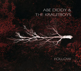 "ABE DIDDY & THE KRAUTBOYS - FOLLOW (red) 12"" Vinyl Record"