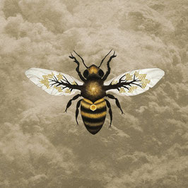 BEES MADE HONEY IN THE VEIN TREE - MEDICINE (CD) jewel case