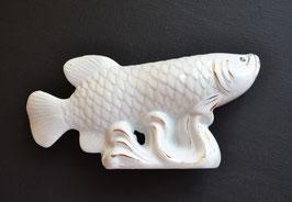 Арована - императорская денежная рыба, фарфор (м)