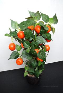 Апельсиновое дерево, символ золота и денежной удачи. 55 см