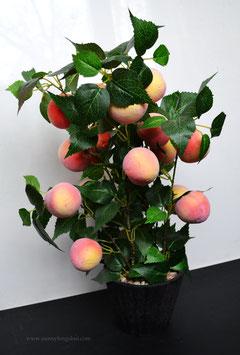 Персиковое дерево. 55 см