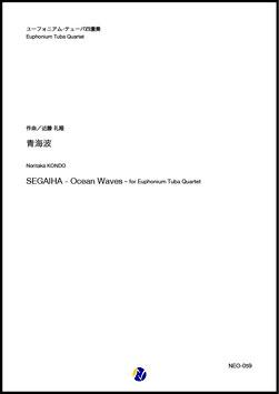 青海波(近藤礼隆)【ユーフォニアム・テューバ四重奏】