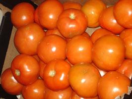 große Salat-tomaten