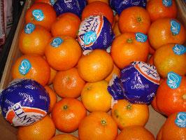 Clementinen (Mandarinen)