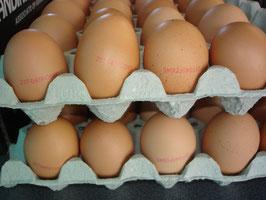 Eier Platteau mit 30 St.