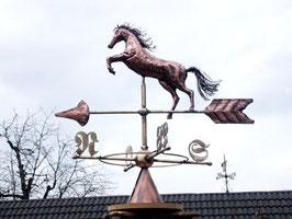 Pferd springend 3D