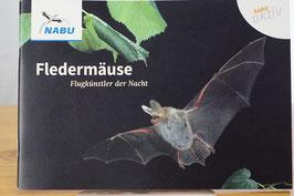 Fledermäuse – Flugkünstler der Nacht
