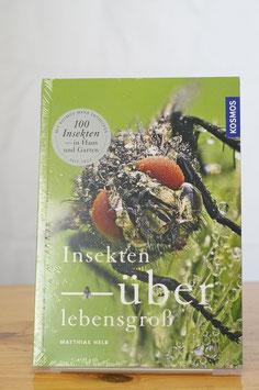 Insekten – überlebensgroß