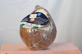 Gefüllte Kokosnuss mit Mehlwürmern und Insekten, ganz