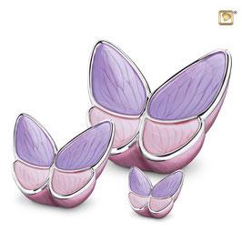 Urne Butterfly