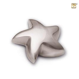 Urne Stern
