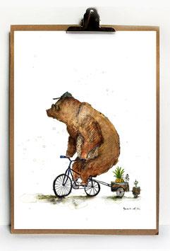 """Kunstdruck """"Bär auf Rad"""""""
