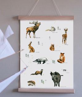"Kunstdruck ""Tiere des Waldes"" Aquarell"