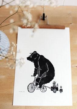 Poster Bär auf Fahrrad, Linoldruck A3