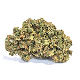 CBD Hanf (Sour Widow) aus CH-Produktion