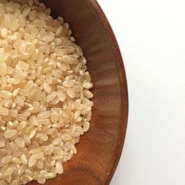 ミルキークイーン 5kg(玄米)