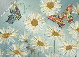 Schmetterlinge und Margeriten