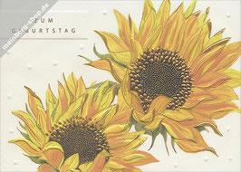 Zwei Sonnenblumen zum Geburtstag