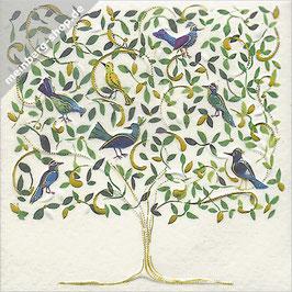 Paradiesvögel Minikarte