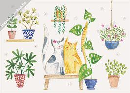 Katzenpaar mit Pflanzen