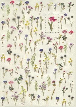Notizheft A5 Blumen und Gräser