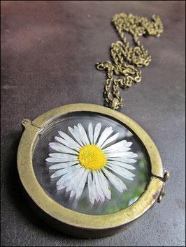 Medaillonkette mit Gänseblümchen